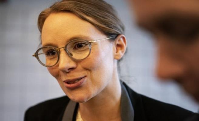Environment minister calls for EU ban on harmful fluorstoffer