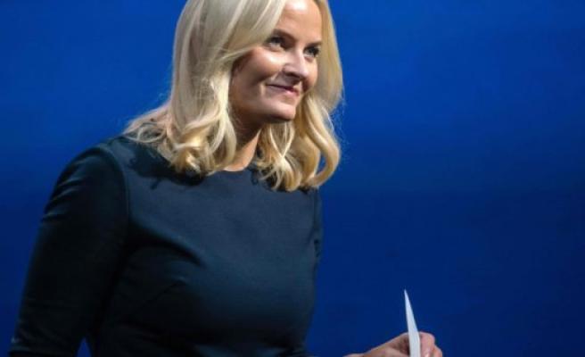 Norway's crown princess met the overgrebsdømte Epstein