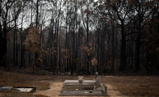 Column   Australia teaches us the path to hell