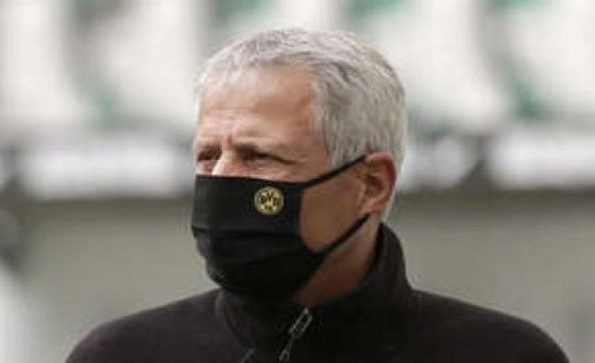 BVB/Bundesliga: create Dortmund Coach Talent, Favre's successor?   Football