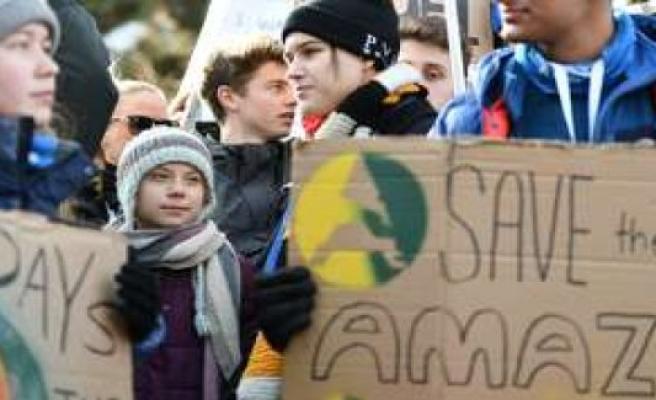 Greta Thunberg: Corona torpedoed their plans - now you confirmed speculation   politics