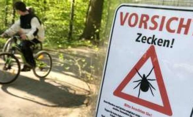 Record-level in ticks-number: risk of meningitis is rising in Bavaria by 50 percent | Bavaria
