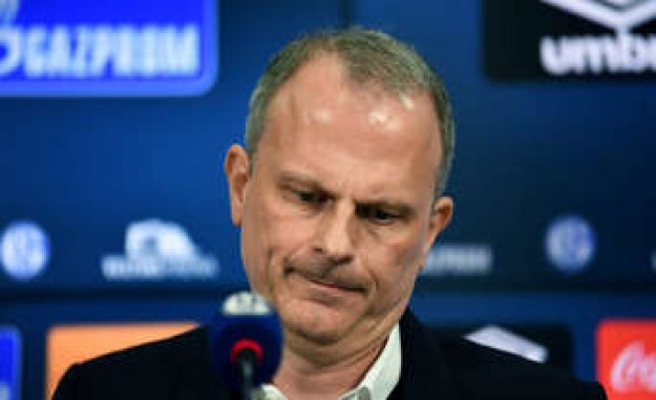 Schalke: S04 Roger tidy - nine players to go | football