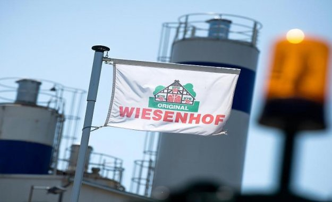 Wildeshausen: Closed slaughterhouse: Wiesenhof has Alternatives