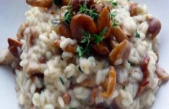 What wine to drink with a mushroom risotto ? - The Point