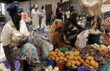 How can africa fight against the scourge of poverty - The Point