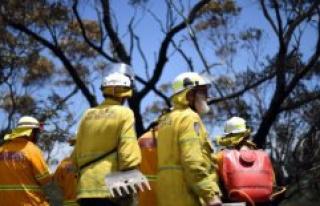 Australian police arrest firefighter to start bushbrande