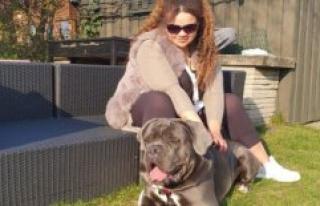 Hannes dog has been blind for amphetamine poisoning:...