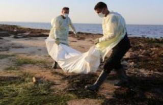 IOM: Fewer migrants perished in 2019