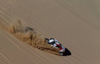 The Dakar challenge Fernando Alonso