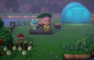 Animal Crossing: New Horizons - the Unwanted inhabitants...