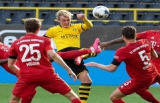 Borussia Dortmund plays at the Maximum, but the FC...