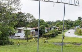 Coronavirus : 67 new cases in French Guiana - The...