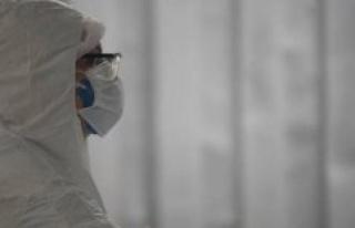 Coronavirus : the Brazil crosses the threshold of...