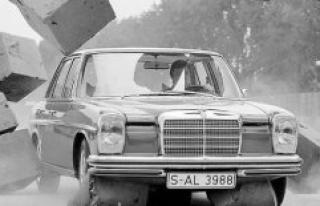 Fleet cars : guardian angels under the hood | Car