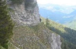 Grammer Berg/Bavaria: Wanderin appalled by mountain...