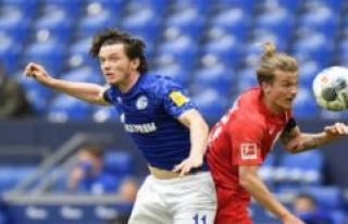 Individual criticism of Schalke 04 against FC Augsburg:...