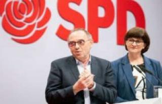 Mützenich as a Savior? SPD-tip, allegedly, Plan and...