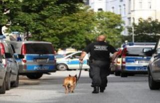 Police Directorate Landau: the wild pig in backpack