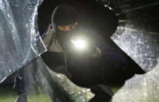 Schweinfurt (Bavaria): police dupe burglars: mirror,...