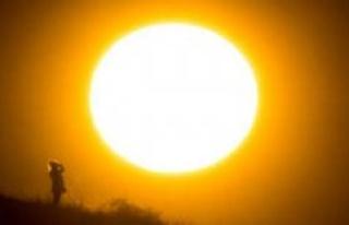Weather/summer forecast: disaster scenario, experts...
