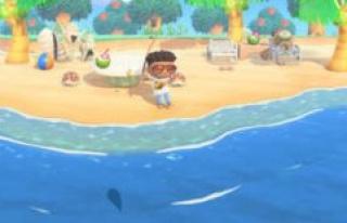 Animal Crossing: New Horizons - summer sea shells...