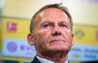 BVB: Borussia Dortmund, with Mega-million-Minus due...