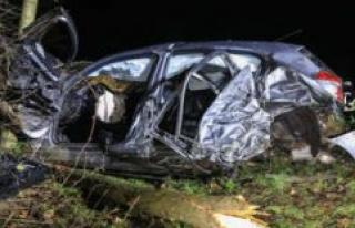 Bamberg (Bavaria): BMW driver smashes into car: a...