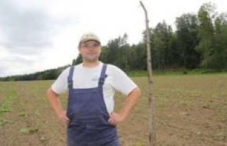 Bavaria: organic farmer hanging dead crows on the...