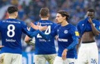 Benjamin Stambouli (Schalke 04): Spectacular turn...