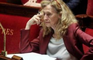 Coignard – Case Traoré : the separation of powers...