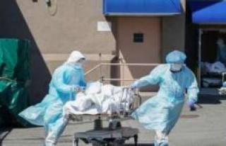 Corona: US researchers discover dangerous Virus Mutation-...
