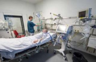 Corona-outbreak/Starnberg: 44 employees at Caterer...