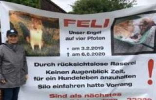 Emmering: death of a dog heavy neighborhood solves...