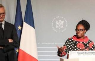 Ethnic statistics : Ndiaye and The Mayor display their...