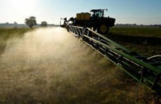 Expert tombeur Monsanto pleads guilty dextorsion of...