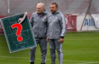 FC Bayern: Flick rotates against Wolfsburg Gets a...