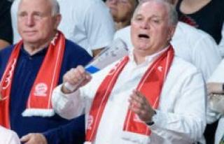 FC Bayern Munich: referee pimped Sebastian Hoeness...