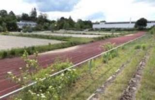 Freising: Freising is set up in terms of school sport...