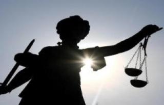 Hanau: exploitation of transsexual brothels: verdict...