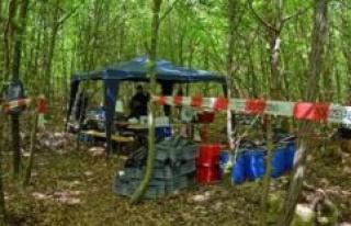 Kipfenberg/Bayern: man finds bones in the woods -...