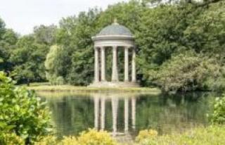 Munich: Sensations-Fund provides for a stir - the...