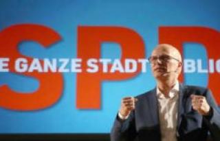 Peter Tschentscher (SPD) was elected mayor of Hamburg,...