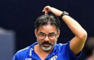 Schalke: Live-Ticker news conference with Schneider:...