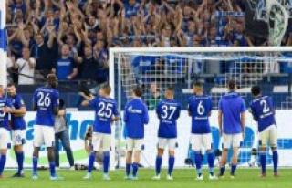 Socially irresponsible: work club Schalke dismisses...