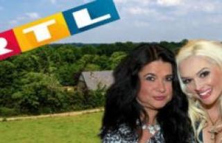 The summer house of the Stars (RTL): Iris Small-Georgina...