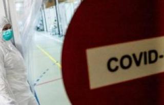 Coronavirus : more than 4 million cases in the United...