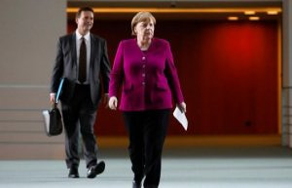 Egyptian spy in the environment, Merkel's spokesman...