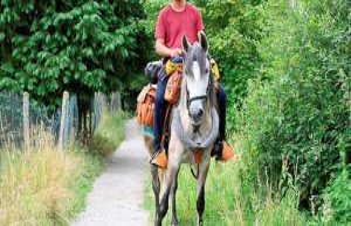 Gaspard Kœnig - The horse, this ado dune-a-half-ton...