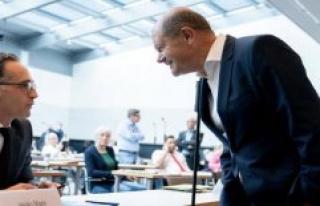 Merkel had already canceled: Maas and Scholz G7 say-Meeting...